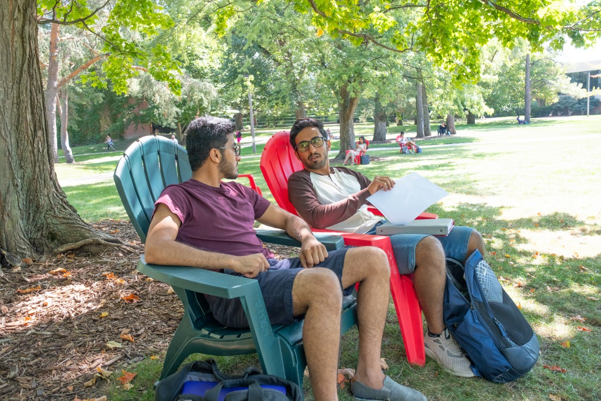 Students sitting in Adirondack chairs in grass